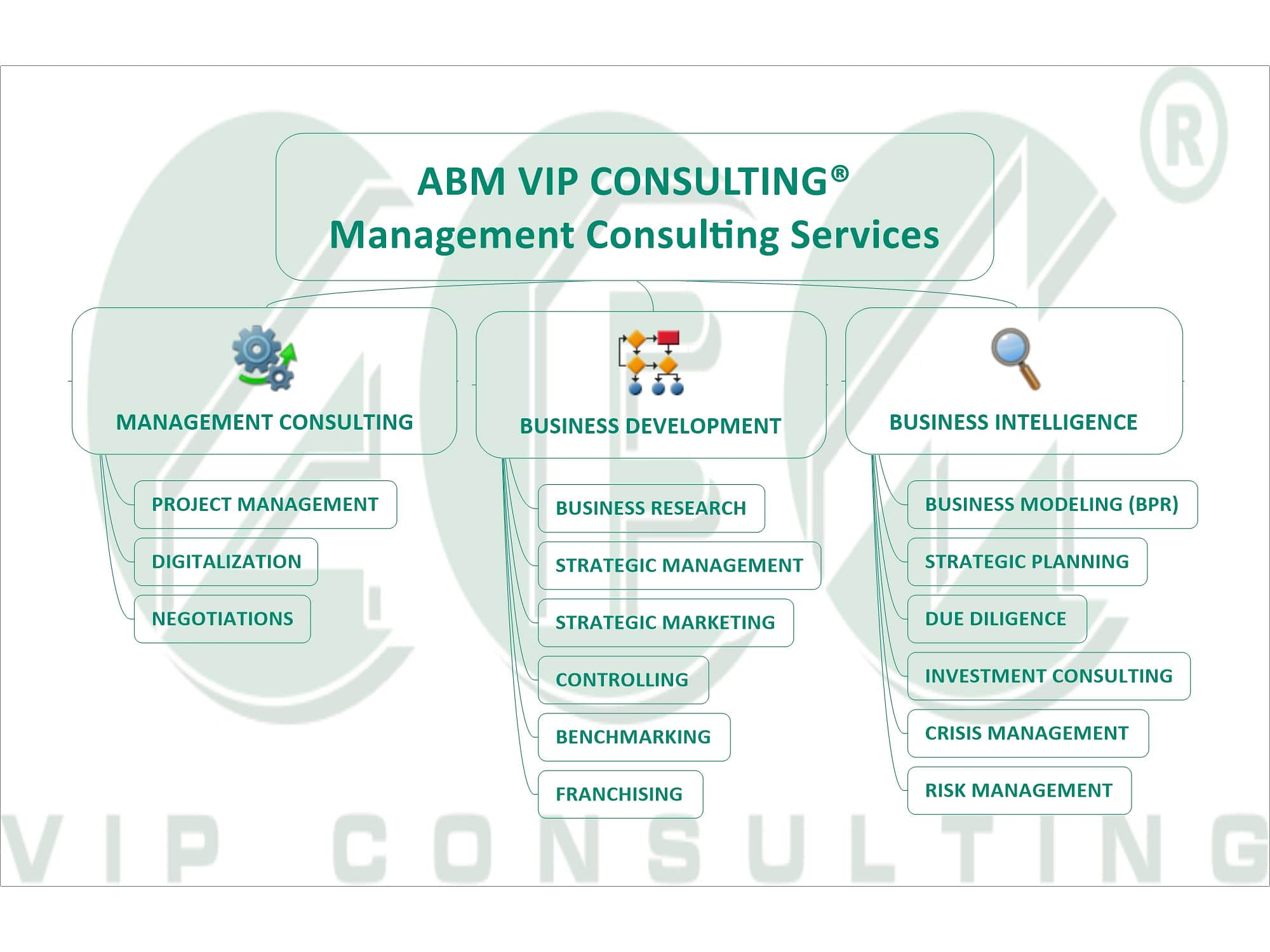 ABM VIP CONSULTING® Management Consulting Services WM